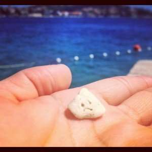 We found this little guy on our beach day...he should be happy!