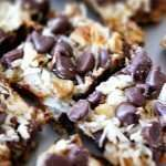 Panda Magic 7 Layer Paleo Bars